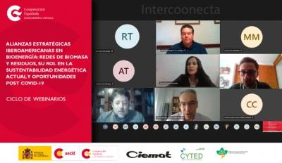 Redes iberoamericanas en bioenergía , biomasa y residuos dialogan sobre su rol en la sustentabilidad energética y oportunidades post COVID-19